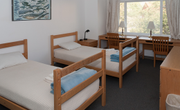 7-dorm-room
