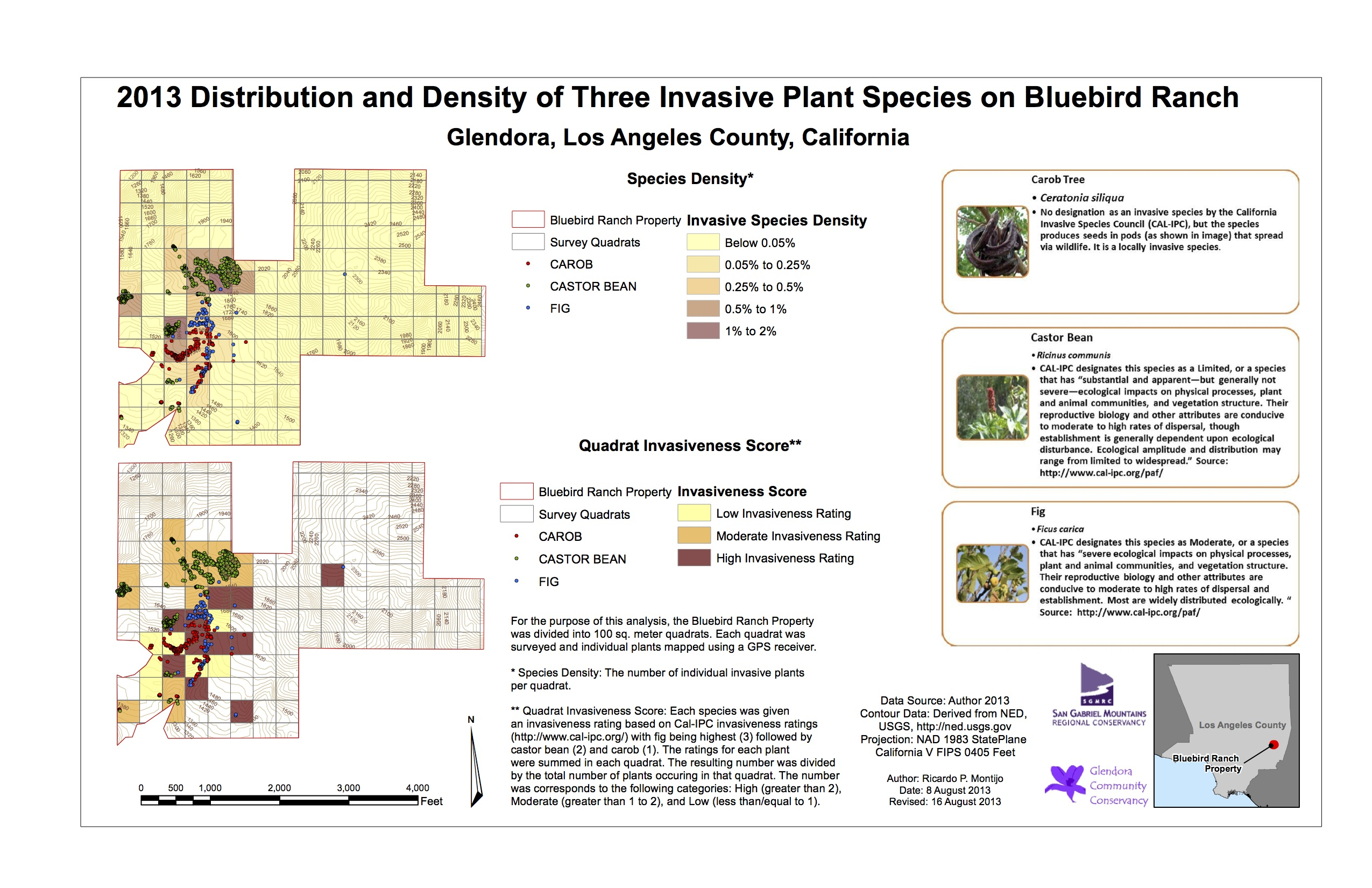 Ricardo Montijo: Distribution and Density of Three Invasive Plant Species on Bluebird Ranch