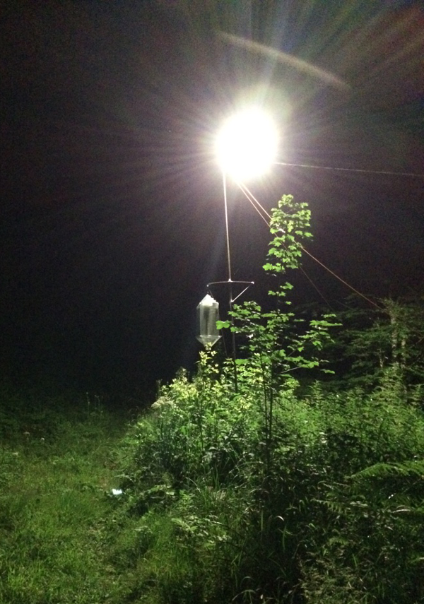A mobile LED lamp installed in a remote meadow.