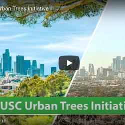 USC Urban Trees Initiative